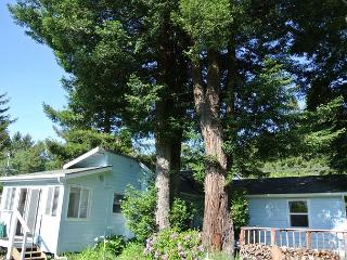 Inviting 2 bedrm Redwood Meadows with Sunny Yard and close to Beach - Trinidad vacation rentals