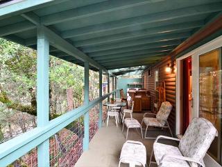 New! Trinity Cove Cabin on Trinity River & Private Beach - Sun & River Fun! - Salyer vacation rentals