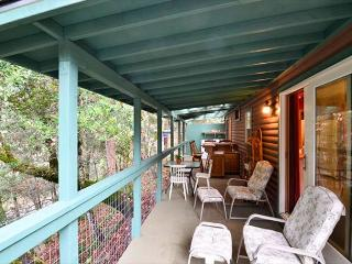 New! Trinity Cove Cabin on Trinity River & Private Beach - Sun & River Fun! - Willow Creek vacation rentals