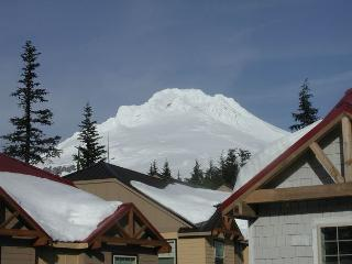 Beautiful Condo in Gov't Camp-Book Now get 3rd night Free thru May 20 - Government Camp vacation rentals