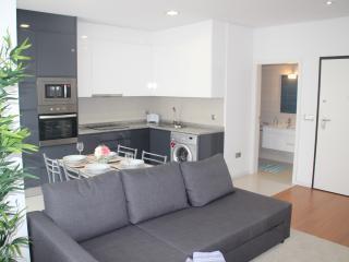 Apartamento em Braga perto da U.M.- 4 pessoas - AL - Braga vacation rentals