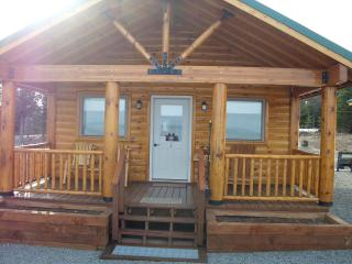 Ocean View Cabin on the Bluff (Wild Rose Cabin) - Ninilchik vacation rentals