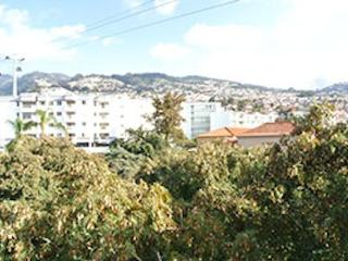 Peaceful Corner - Apartment in the city center - Funchal vacation rentals
