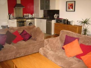 3 bedroom Apartment with Internet Access in Belfast - Belfast vacation rentals