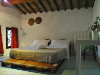holiday house in country Chianti - Mercatale di Val di Pesa vacation rentals