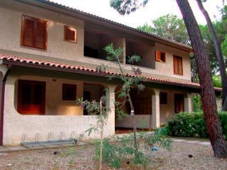 Appartamento  Aragosta - Principina a Mare vacation rentals