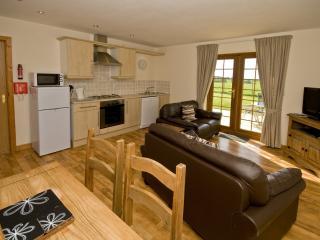 Mynydd Cottage Anglesey - Brynsiencyn vacation rentals