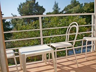 Apartments and Rooms Joško - 39911-A4 - Gradac vacation rentals
