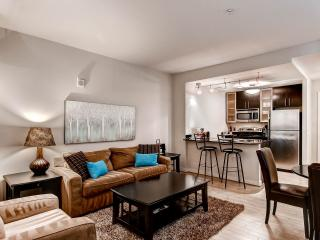 GSA Luxury 1 BR Apartmet at Woodward Building - District of Columbia vacation rentals