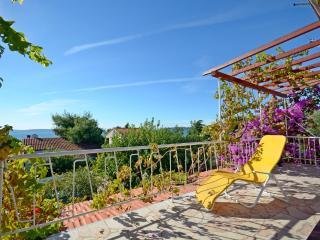 Apartments Nikica - 45461-A1 - Seget Vranjica vacation rentals