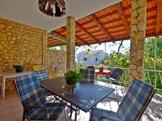 Apartments Nikica - 45461-A2 - Seget Vranjica vacation rentals