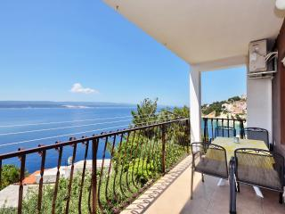 Spacious apartment with great view - Mimice vacation rentals