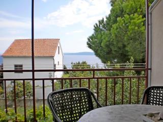 Apartment Anita - 46411-A1 - Okrug Gornji vacation rentals
