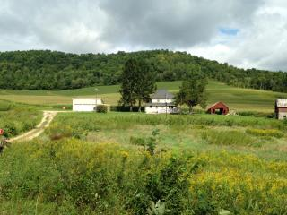 Nice Farmhouse Barn with Deck and Internet Access - Fountain City vacation rentals