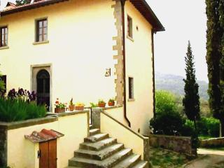 Apt. Ancient Fireplace in villa 18km from Florence - Rignano sull'Arno vacation rentals