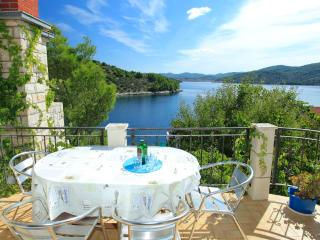 House Nikola - 53821-K1 - Vela Luka vacation rentals