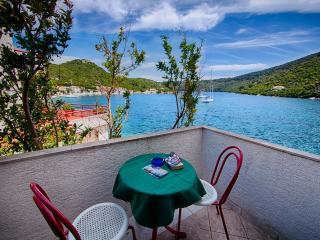 Apartments Ljubo - 53961-A4 - Pasadur vacation rentals