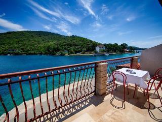 Apartments Ljubo - 53961-A5 - Pasadur vacation rentals