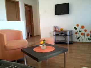 Apartments Sandra - 93181-A1 - Petrovac vacation rentals