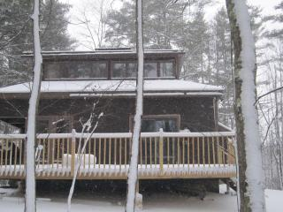 Luxury country cabin on 40 acres of private land - Southwestern Vermont vacation rentals