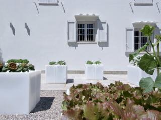 Lovely 7 bedroom Villa in San Miniato - San Miniato vacation rentals