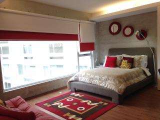 Loft Condesa Mexico City. - Mexico City vacation rentals