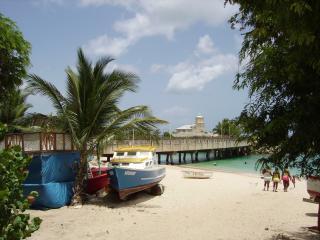 Barbados Vacation Tropical Rental - Maynards vacation rentals