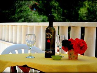 0312SLAT A3(2+1) - Slatine - Slatine vacation rentals