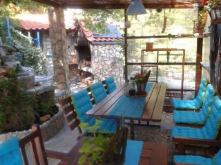 Beautiful Seaside Resort Plavi Raj (Blue Paradise) - Razanj vacation rentals