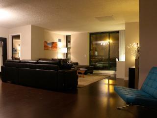 2 Bed 1.5 Bath Huge Condo with 3 Queen Beds - Chicago vacation rentals
