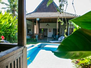 Tara Villa,gorgeous place in Canggu - Canggu vacation rentals