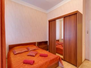 Spacious apartment on Moika embankment(355) - Saint Petersburg vacation rentals