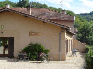 Spacious 5 bedroom Courzieu Gite with Internet Access - Courzieu vacation rentals