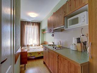 Comfortable ApartHotel on Nevskiy prospect - Saint Petersburg vacation rentals
