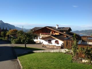 Nice Condo with Internet Access and Dishwasher - Aeschi b. Spiez vacation rentals