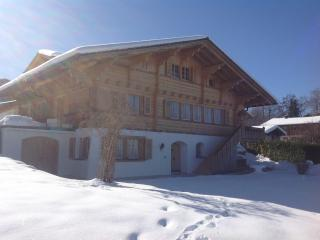 Nice Condo with Internet Access and Water Views - Aeschi b. Spiez vacation rentals