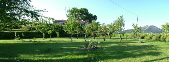 Bright 4 bedroom Farmhouse Barn in Celorico de Basto - Celorico de Basto vacation rentals