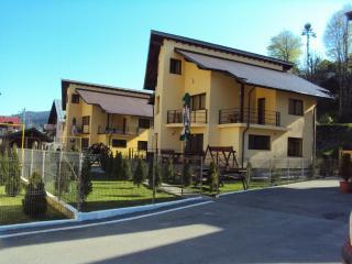 Bright 5 bedroom Busteni Villa with Internet Access - Busteni vacation rentals
