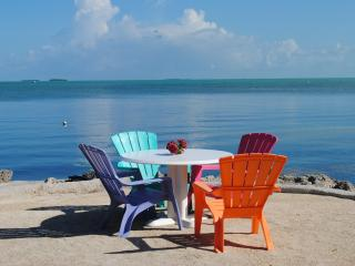 75190 Overseas Hwy - 28 NIGHT MINIMUM!!!!!!! - Matecumbe Key vacation rentals