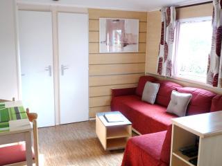 Mobil home 3 ch - Les Charmettes 4* - La Palmyre - La Palmyre-Les Mathes vacation rentals