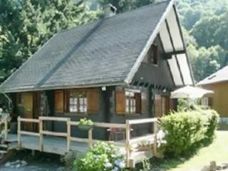 In the heart of the Pyrenees, beautiful chalet with 2 bedrooms and terrace - Argelès-Gazost vacation rentals