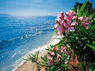 Gorgeous nature and sea view room 2 min from beach - Central Dalmatia vacation rentals