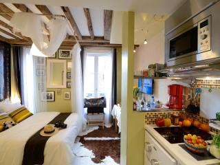 Charming studio in the center of Paris /GREEN SHOT - Paris vacation rentals