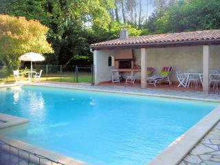 Fantastic, 7-room house in Casteljaloux, Lot-et-Garonne, with large garden and private, secure pool - Aiguillon vacation rentals