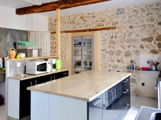 In the Hautes-Pyrénées, large luxury house with unobstructed mountain views, garden and pool - La Barthe-de-Neste vacation rentals