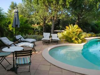 In the heart of the Varoise country, charming gite with garden and pool - Var vacation rentals