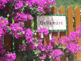 Bellamare at Mahoe Bay, Virgin Gorda - Stone Harbor vacation rentals