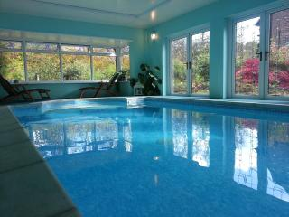 Forest Retreat With Private Indoor Heated Pool - Lydbrook vacation rentals