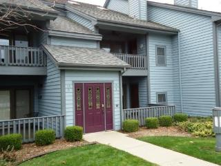 Cannery Row 5 - Saugatuck vacation rentals