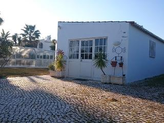 Nice Villa for long term rent - Lagoa vacation rentals